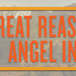 10 Great Reasons to be an Angel Investor